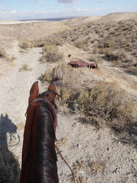Riding Hillbillie Willie in the Owyhee Hallowed Weenies endurance ride, Idaho