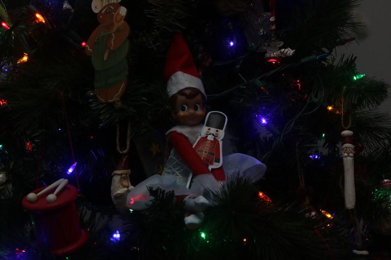 Welsh Christmas 2018-169.jpg