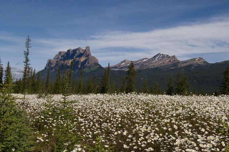 Banff-  2011 Bike Ride-110724-6878.jpg