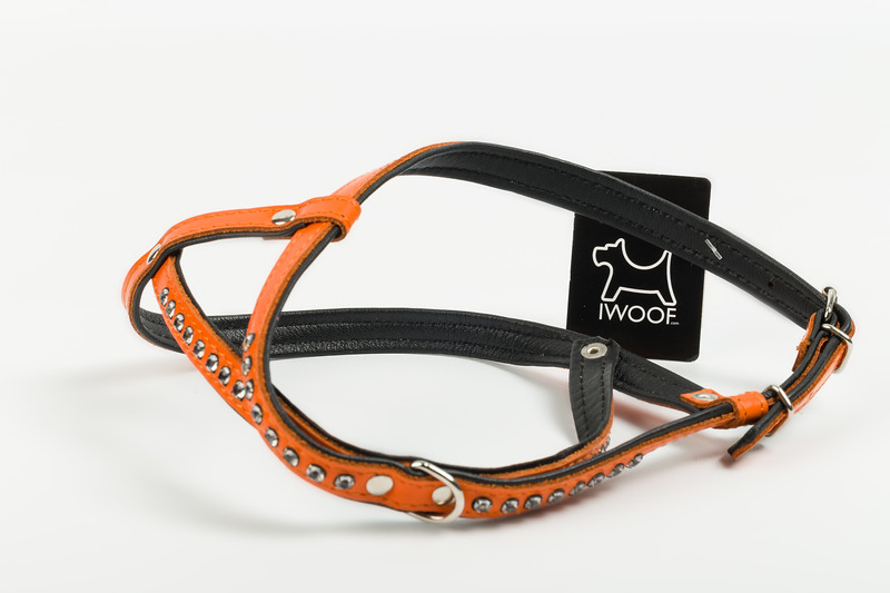 iwoof_designer_dog_accesories_collars_leads_toys_beds_luxury_posh_leather_fabric_tags_charms_treats_puppy_puppies_trends_fashion_bowls-0024.jpg