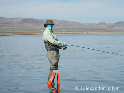 YES, they do fish on ladders in Pyramid Lake. So?