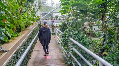 State Botanical Garden, Athens GA.