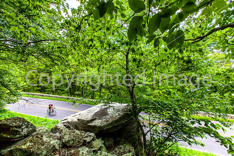 Skyline Drive, Virginia - Cyclists  - Day 6 of Adventure Cycling Tour