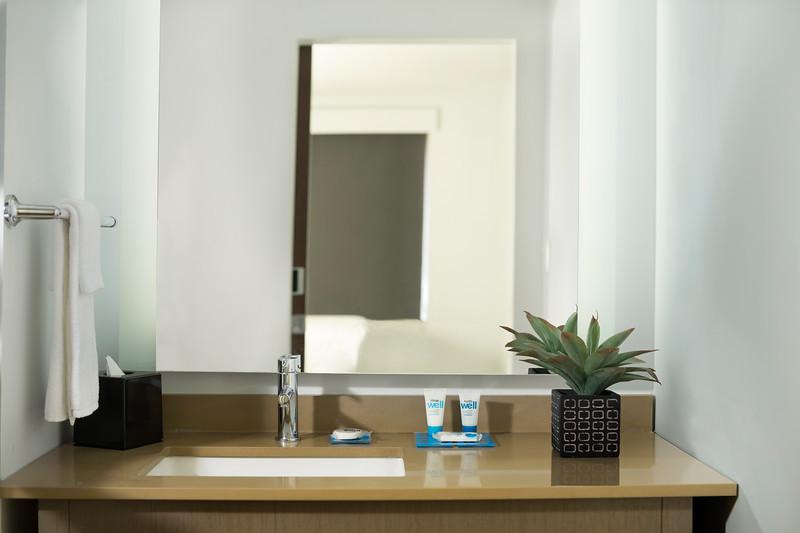 22-Sink-HH Frisco.jpg