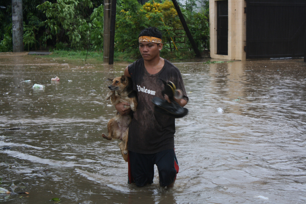 Description of . A resident carrying his pet dog wades through a flooded street due to heavy rains brought about by Typhoon Bophal in Cagayan de Oro City, southern island of Mindanao on December 4, 2012.  Typhoon Bopha smashed into the southern Philippines early December 4, as more than 40,000 people crammed into shelters to escape the onslaught of the strongest cyclone to hit the country this year.  AFP PHOTOSTR/AFP/Getty Images