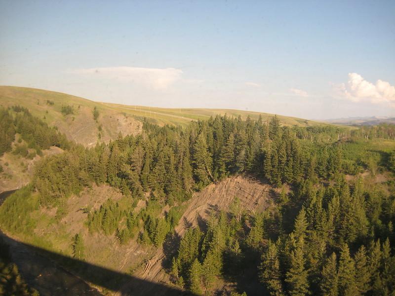 2008-07-24-YOCAMA-Montana_2492.jpg
