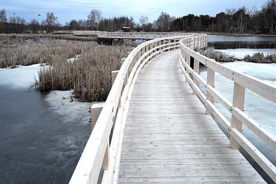 Waterfoul Park Boardwalk, Sackville : Saturday 19 April 2014