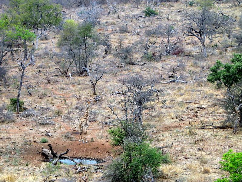 Belule Reserve (12).jpg