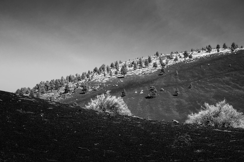 Hills, Sunset Crater Volcano National Park