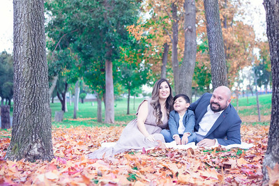 DE SANTIAGO FAMILY SESSION 2019