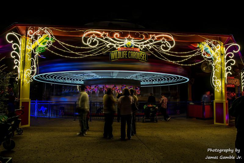 Houston-Zoo-Lights-3050.jpg