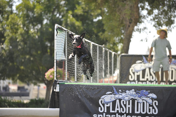 Splash Dogs San Joaquin June 28, 2009
