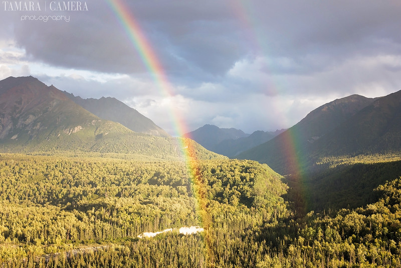 Rainbows3-7-2.jpg