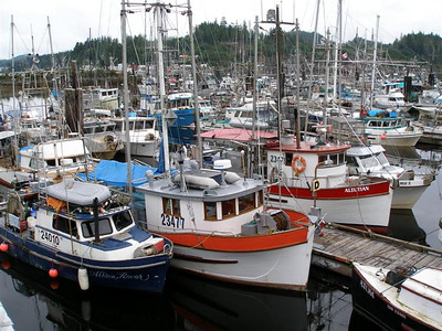 Port Hardy, August 2007
