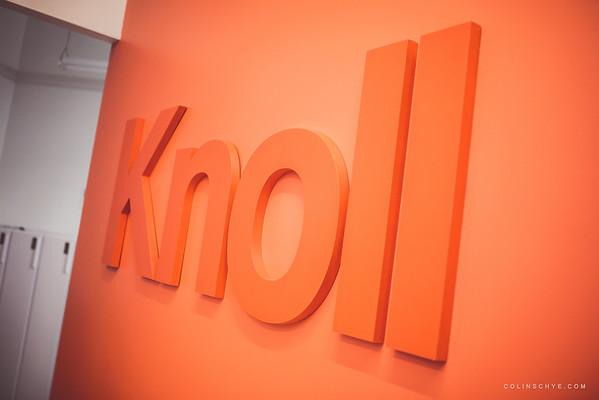 Knoll Playground