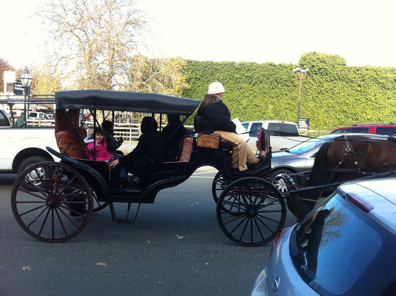 One of many horse-drawn carriages giving tourist rides in Old Sacramento
