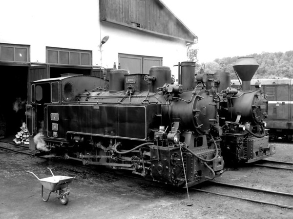 Romania's last forest railway