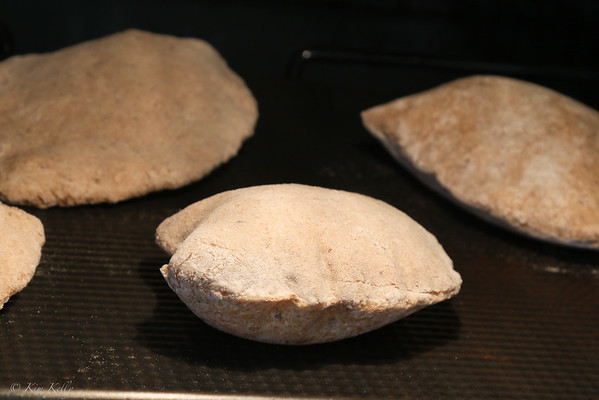 Homemade Whole Wheat Pita