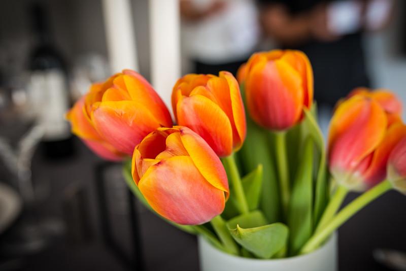 The beautiful tulips!