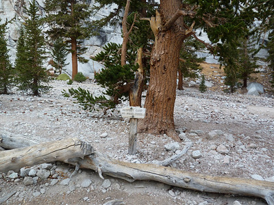 Mt. Whitney Main Trail - October 1, 2010