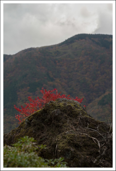 Hakone Museum-0734.jpg