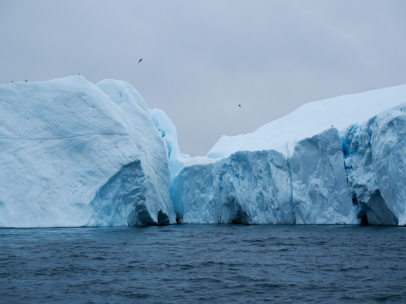 Icebergs on the Ilulissat Icefjord