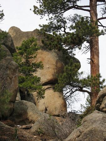 Lumpy Ridge Loop