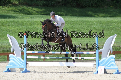 Grand Prix Ring: Level 3/4 Jumpers