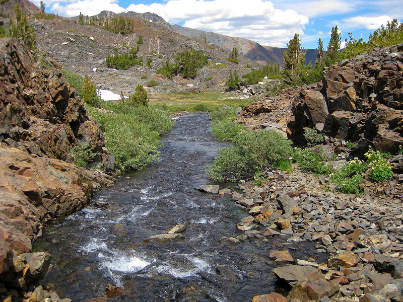 """View from """"the bridge"""" to Mill Creek running to Lundy Lake."""