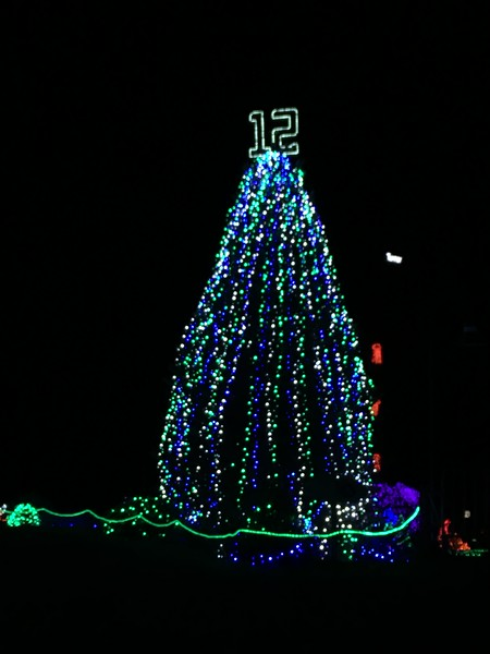 Point Defiance Zoo Zoolights