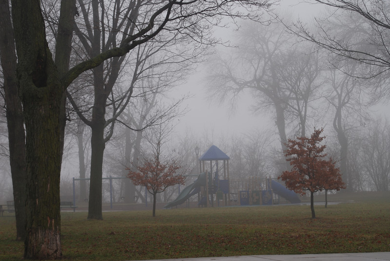 Fog 273.jpg