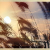 Landscape/Seascape/Skyscape :