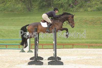 Grand Prix Ring: High Children/Adult and Level 3/4 Jumpers