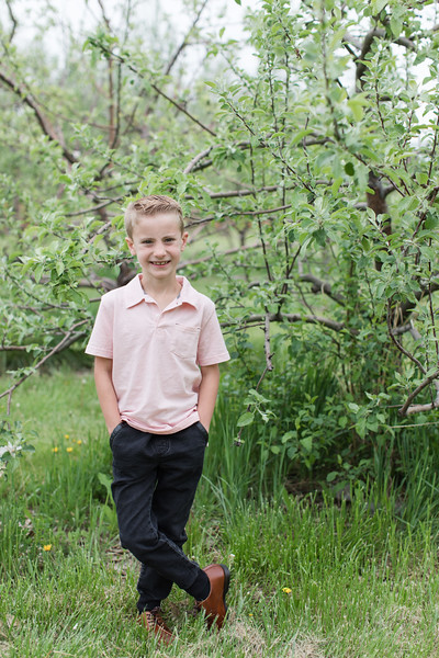 Raines at the Orchard