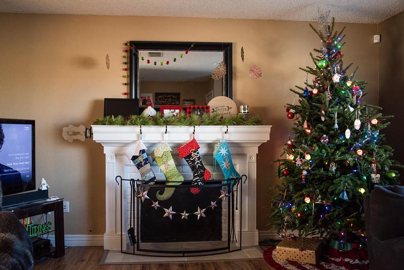 Christmas 2018-7234.jpg