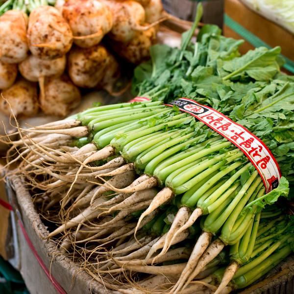 Radishes for sale in market, Dongdaemun Market, Seoul, South Korea