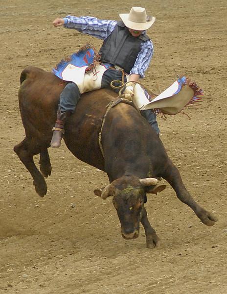 Coombs Bullarama 2008-2-219A.jpg