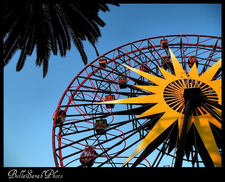 wheel (Large).jpg
