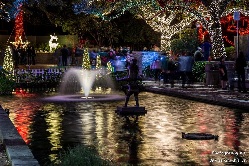 Houston-Zoo-Lights-2932.jpg