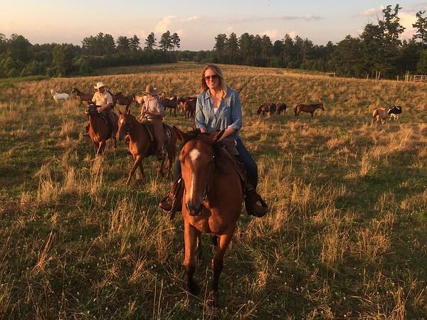 June 2016 @ Legacy Wild Mustang Preservation