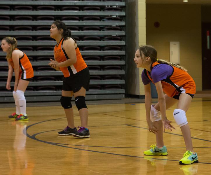 Volleyball-4019.jpg
