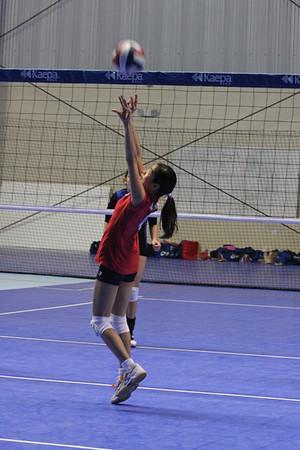 Dallas Junior Volleyball Club