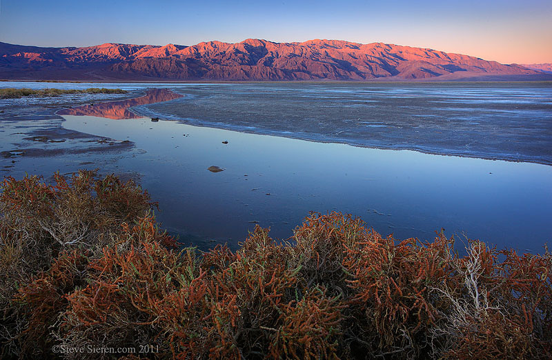 Panamint reflection in a spring lined with Pickleweed in Death Valley