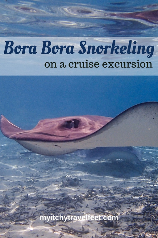 Swim with a ray on a Bora Bora snorkeling cruise excursion.