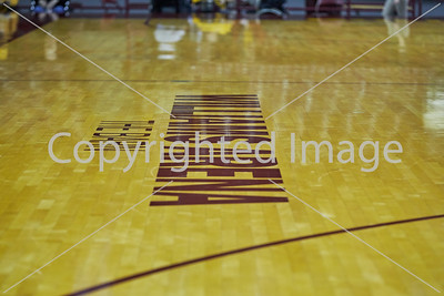 2016-11-12 Mn Gophers vs Harvard