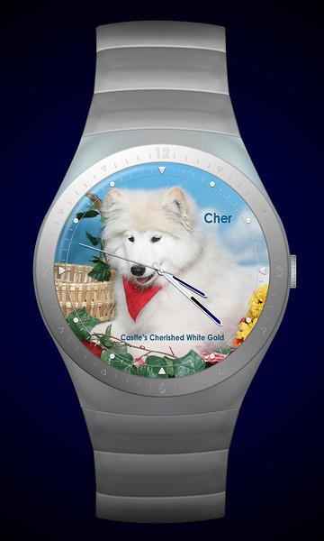 Cher-Watch.jpg