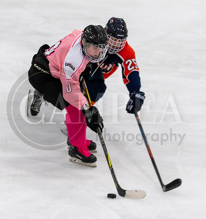 Pink the Rink - Capitals vs Sioux Falls Flyers - Feb 8 2020