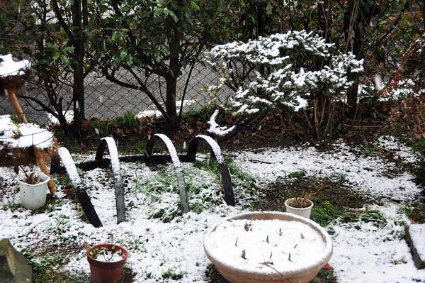 MORIYA SNOW - 11 FEB 2011