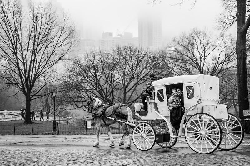 Central Park Elopement - Kathlynne & Kristian-21.jpg