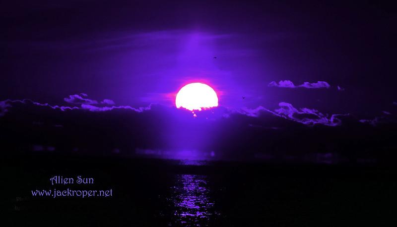 Alien sun _7078.jpg